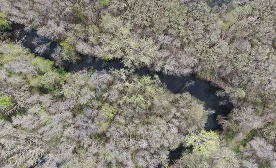Rice Creek overhead view