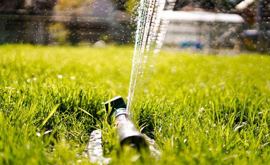 Yard sprinkler watering the lawn