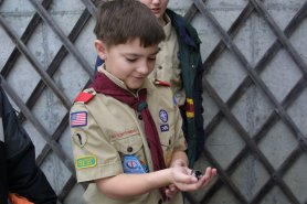 Scout_with_bird